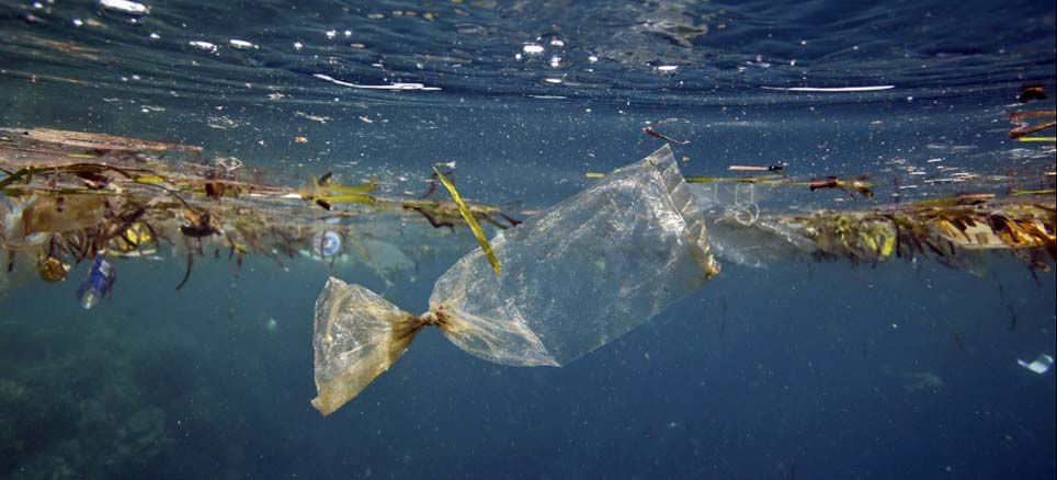 Cinco Trillones de Trozos de Plástico en el Mar.
