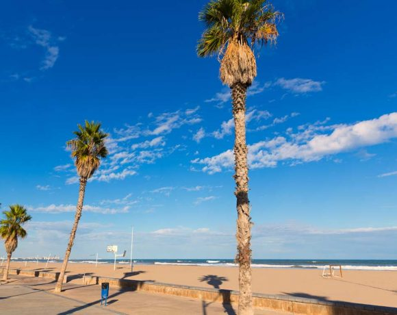 Recogidas 246 Toneladadas de Basura en Playas Valencianas